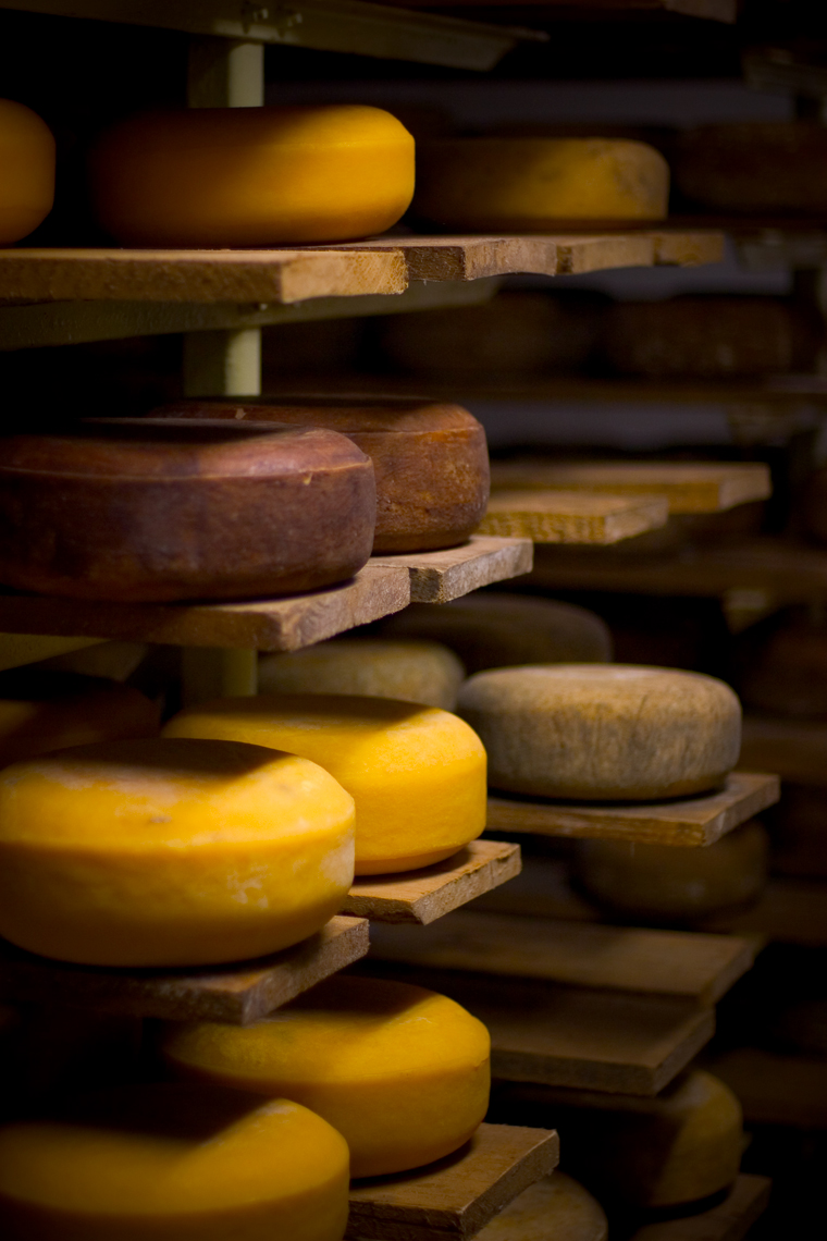 Cheese-Rack_webres